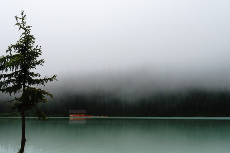 Low hanging clouds completely obscuring the mountains surrounding Lake Louise.